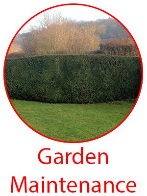 garden-maintenance-service